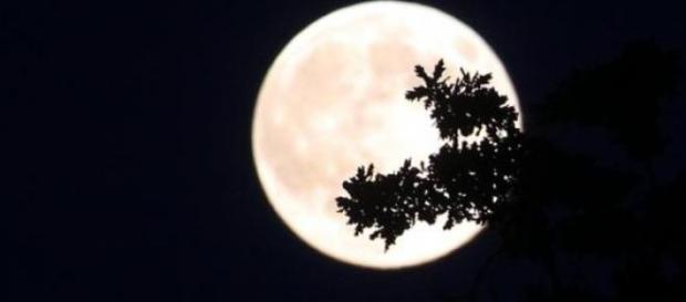 Întunericul are lumina lui. Luna este lumină.
