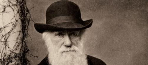 Charles Darwin, author of The Descent of Man