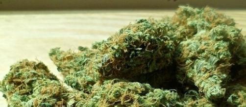 La marijuana peggiora la memoria
