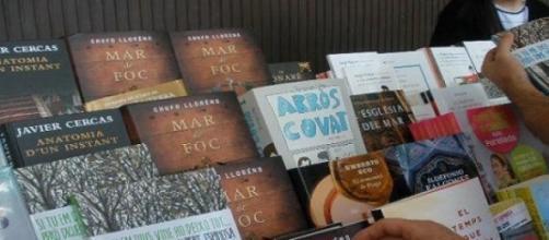 Libros Diada de Sant Jordi 2011 (Foto del Autor).