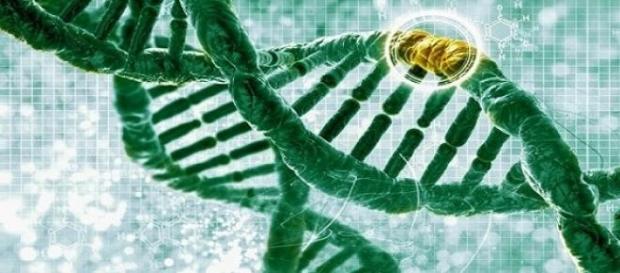 Materialul genetic uman poate fi editat