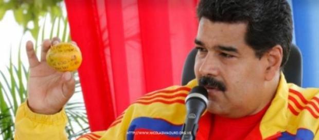 Nicolás Maduro mostrando a fruta aos presentes.
