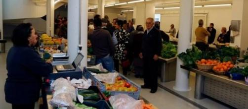 Novo mercado de Abrantes (Foto CMA)