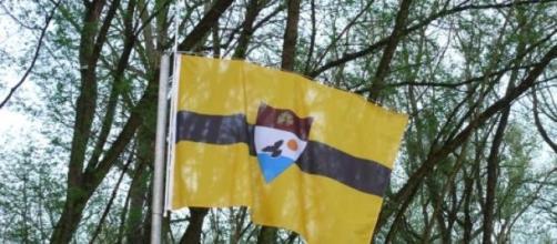 Bandera de la República Libre de Liberland
