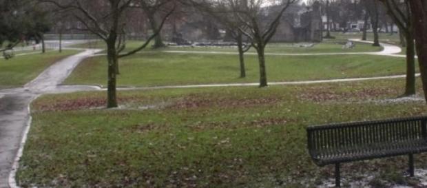 In einem Park geschieht das Unfassbare