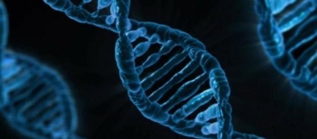 Representación de una molécula de ADN