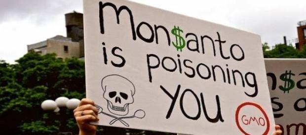 Protestos contra a Monsanto se espalham pelo mundo