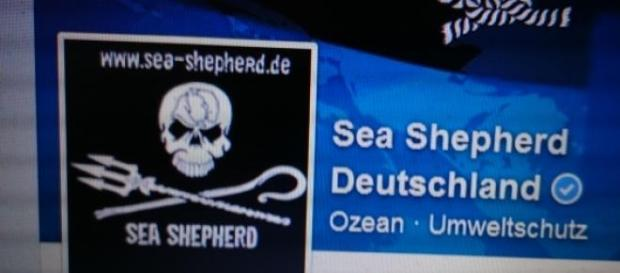 Foto: Facebook Sea Shepherd Deutschland.