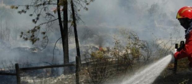 Já se registaram 36 incêndios
