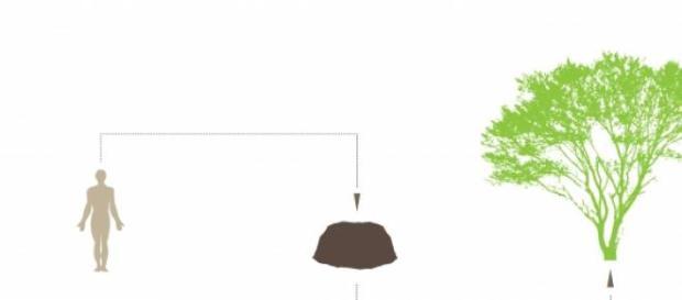 Diagrama del proyecto funerario