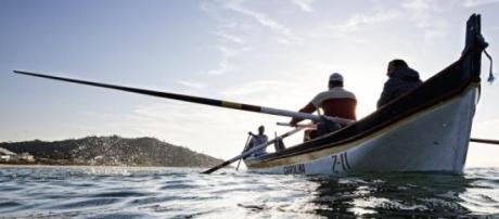 Pescadores tomam medidas para gerir quotas