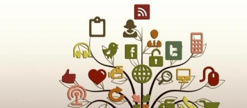 Nem tudo são flores no reino das redes sociais