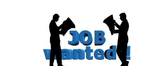 job wanted pentru studenti
