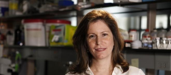 Dr. Sheila Nirenberg a reuşit să descifreze codul