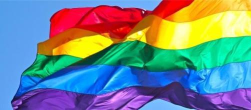Bandeira LGBT, debate sobre identidade trans