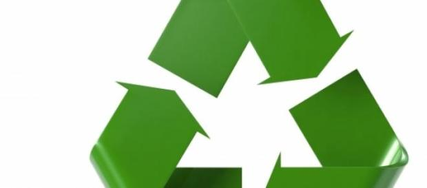 Al reciclar 1 tonelada de papel salvas 17 árboles