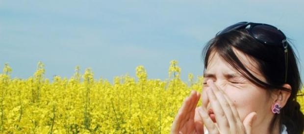 Alergia si proveniența acesteia.