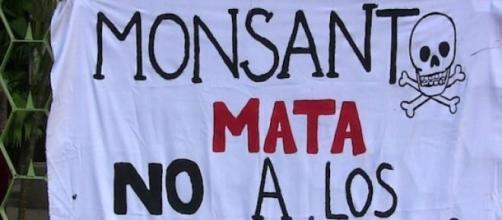 Monsanto complice del crimen de los agrotóxicos