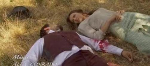 Aurora cade dall'albero, Candela lascia Tristan