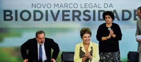 Dilma Rousseff em cerimônia no Palácio do Planalto