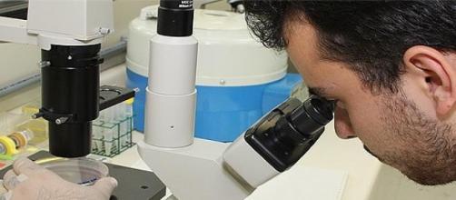 Cientistas brasileiros terão maior liberdade