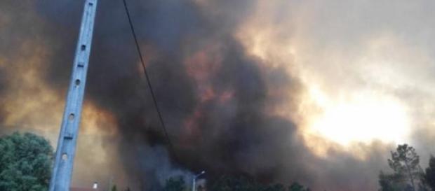Incêndio de Ponte de Lima ameaçou casas.