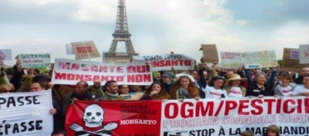 Marche contre Monsanto à Paris © Combat Monsanto