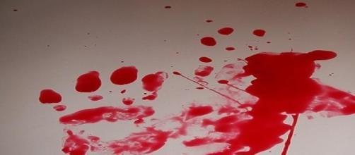 Elena Ceste, per i giudici Michele è l'assassino