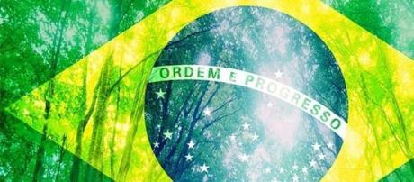 Brasil pode se adequar a Protocolo de Nagoya