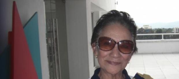 Dra. Sofia Hernández, profesor titular en la UNAM