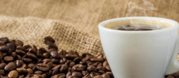 Cafeaua este ameninţată cu dispariţia