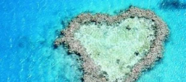 Purificarea apei cu pulbere de corali