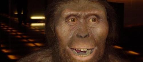 """Reconstrução de um australopiteco como a """"Lucy""""."""
