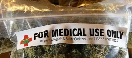 A giugno inizia la vendita della cannabis italiana