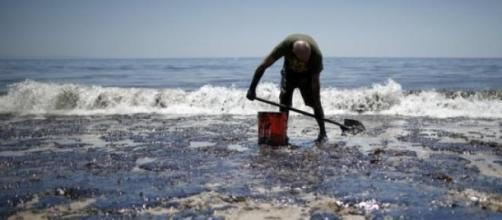 La Californie a été victime de deux marées noires.