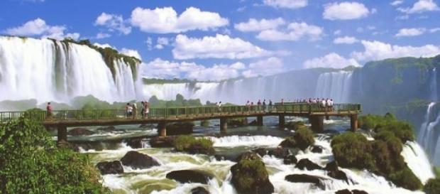 Fox do Iguaçu no interior do Paraná