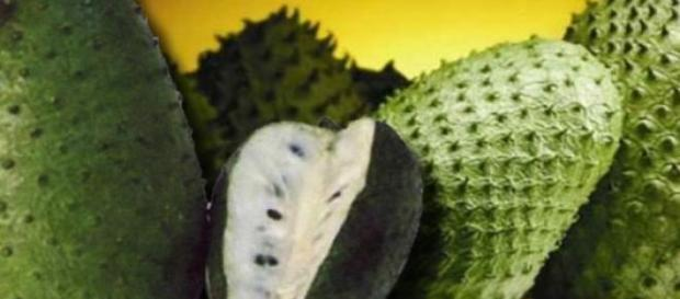 Graviola o guanábana para curar el cáncer