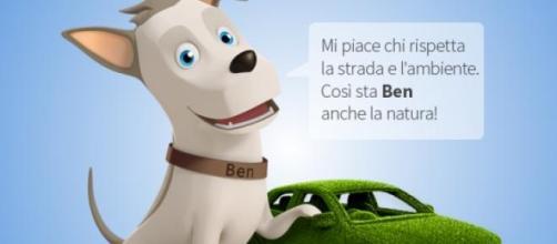 Il cagnolino Ben, mascotte dell'assicurazione