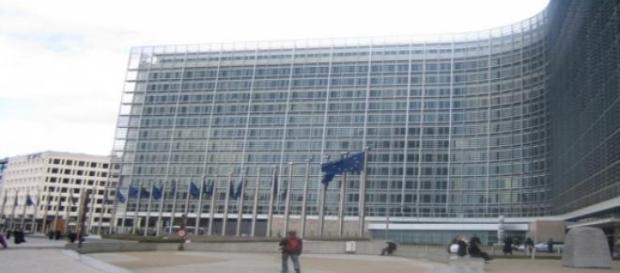La Commissione Europea si esprime sul caso Xylella