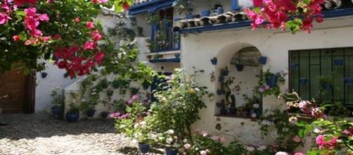 Patios de Córdoba floridos