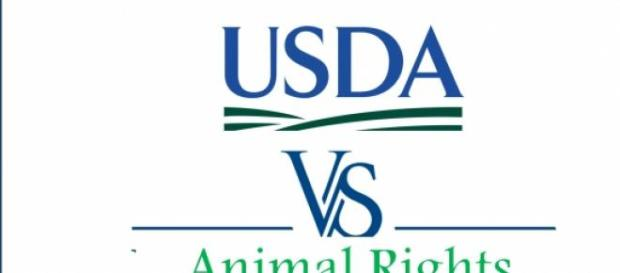 USDA vs. Animal Rights Movement