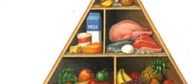 Evoluția nutiției si dieteticii.
