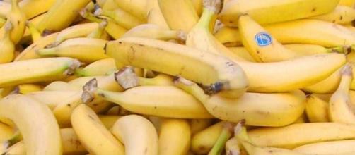 Plátanos de Canarias, no curan el cáncer