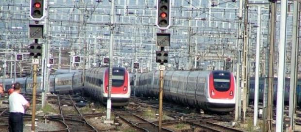 Trenurile estivale, trenurile soarelui