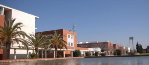 Universidade de Aveiro (UA)