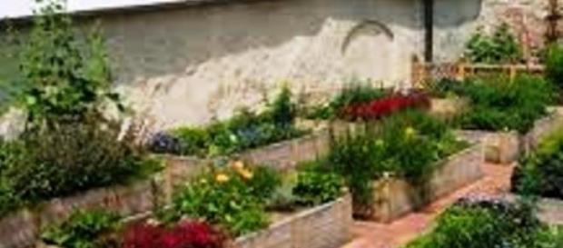 Ogrody wawelskie - skrzynie rabatowe