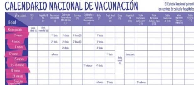 importancia del Cronograma de Vacunación