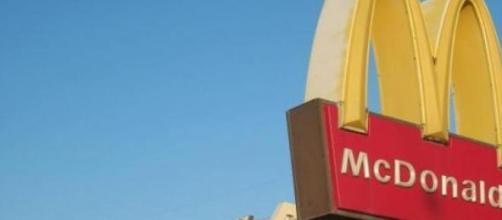 Las ratas que viven en 8 y 50 entran a McDonald's