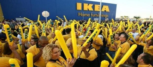 1000 posti di lavoro per Ikea