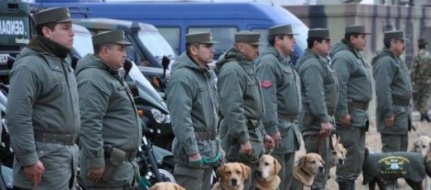 "Gendarmes del operativo ""Escudo Norte"""